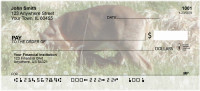 Whitetail Fawns Personal Checks | BAA-01