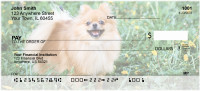 Pomeranian Personal Checks | DOG-42