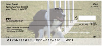 Border Collie Agility Personal Checks | DOG-45