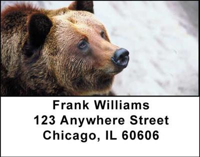 Grizzly Bears Address Labels | LBANI-12
