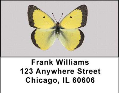 Butterfly Collector Address Labels | LBANI-50