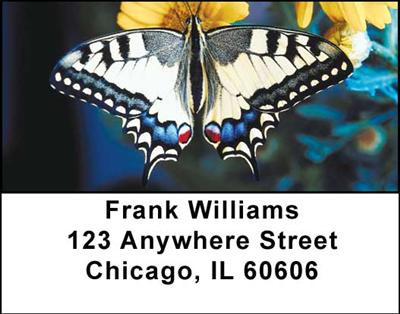 More Butterflies in Nature Address Labels | LBANI-51
