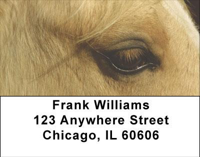 Horses Seeing Eye to Eye Address Labels | LBANI-85