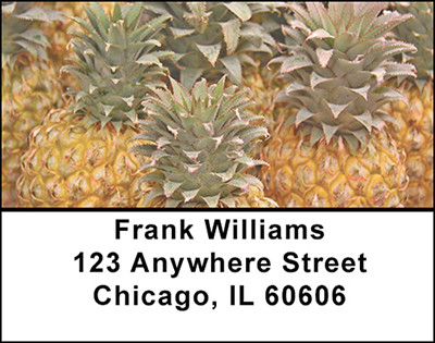 The Pineapple Address Labels | LBBAA-74