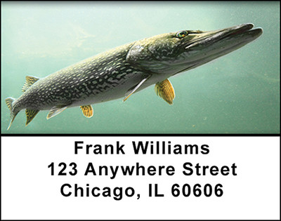 Pike Fishing Address Labels | LBBAH-07