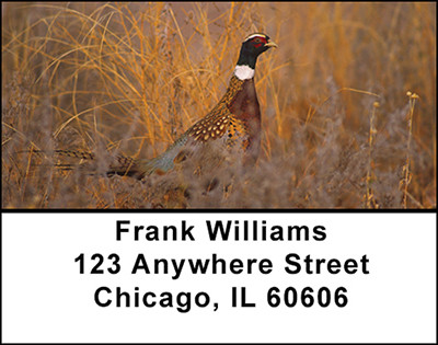 Pheasants Address Labels | LBBAI-15