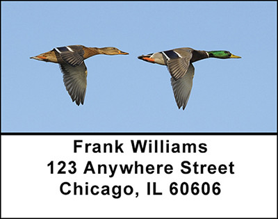 Mallard Ducks Flying Address Labels | LBBAI-21