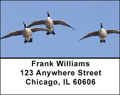 Canadian Geese in Motion Address Labels | LBBAI-22