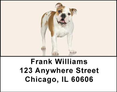 Bulldogs Address Labels | LBDOG-04