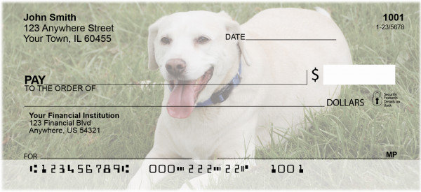 Yellow Labradors Personal Checks | DOG-10